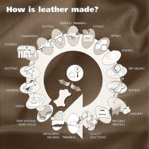 A step by step look at how leather is made