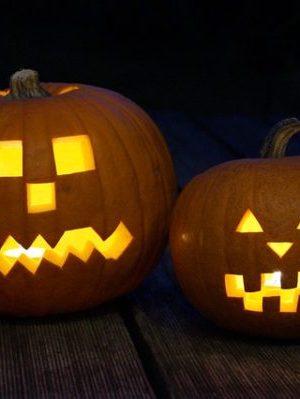 pumpkin-201962_640